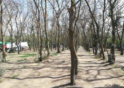 Одесская область, отдых летом, Лебедевка